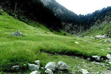 Clean Pakistan